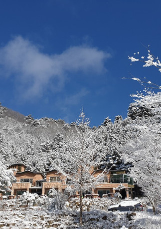 winter_02.jpeg
