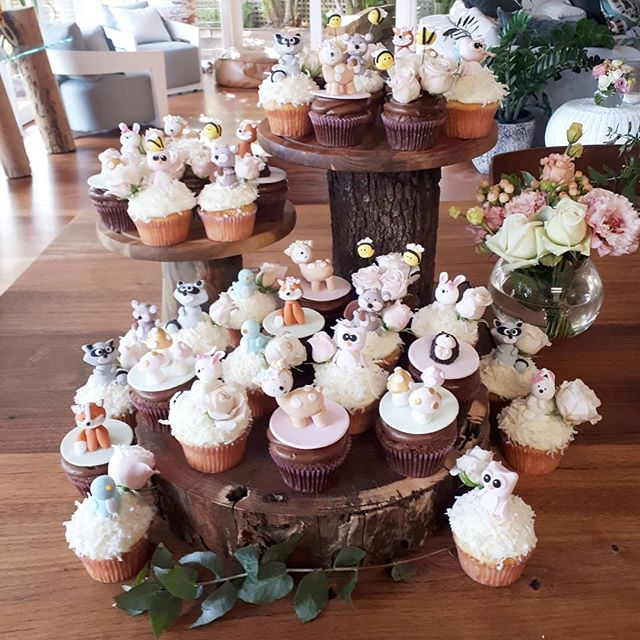 Photo 2....all set up! This was such a cute baby shower theme! Woodlands animal cupcakes with the pr