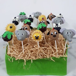 Lion King themed cake pops and chocolate
