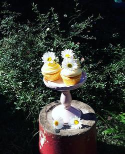 Lemon and daisy cupcakes  #cupcakes #das