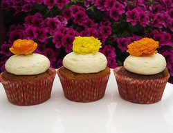 Spiced pumpkin cupcakes with cinnamon cream cheese frosting 🌺🌻🍊 #cupcakes #flowers #october #cake