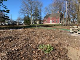 Urban Farming at the Walker House