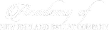 Academy of NEBC Logo.png