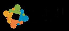 VNE logo.png