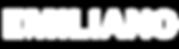 logo_inv.png