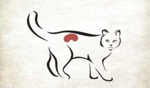 cat kidney.jpg