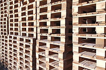 Stacks of pallets all lined up
