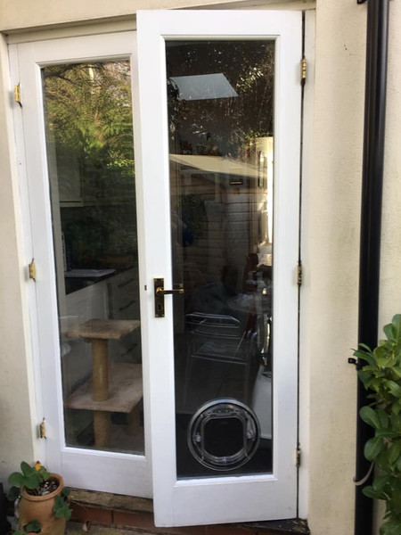 A white door with a cat flap.jpg