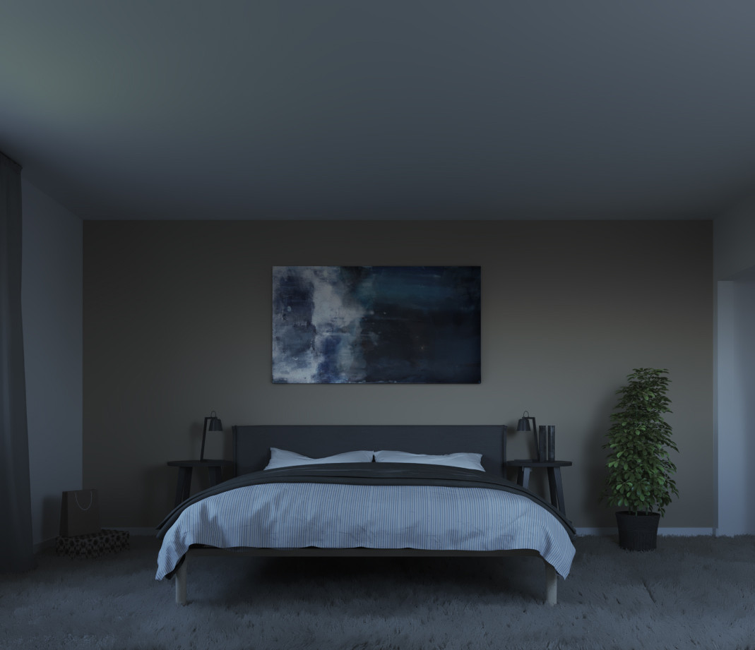Bedroom without Skylight