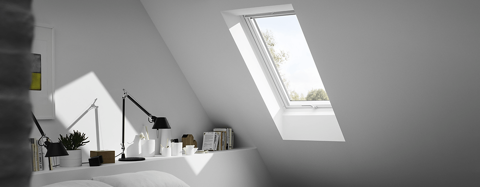 Roof window Loft.png