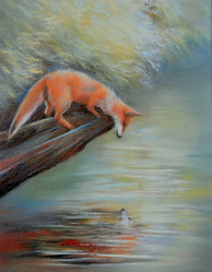 Fox and his reflection