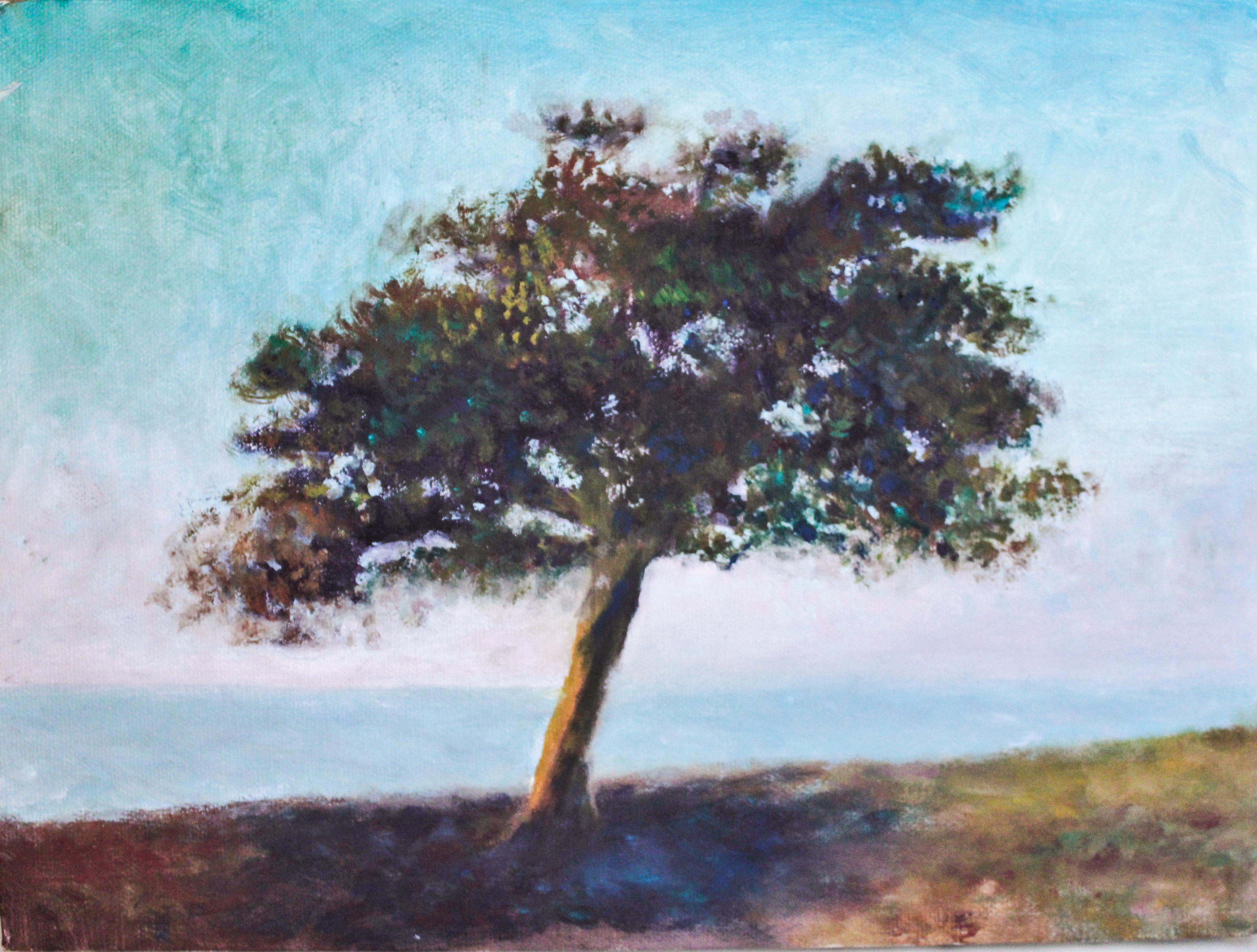 Alki Tree