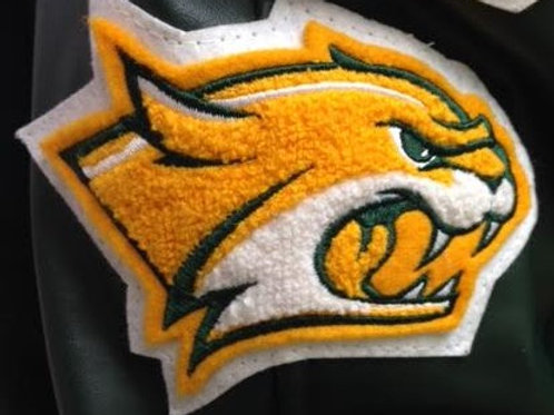 Mascot Patch - Walker High School