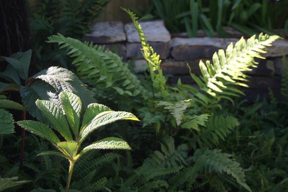 Textured planting