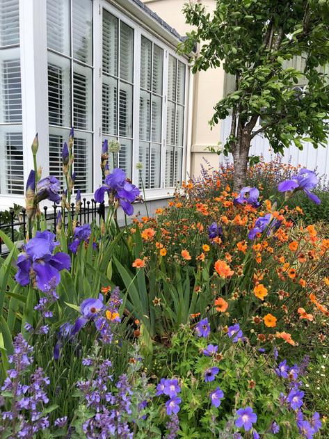 Planting Garden Design North Devon