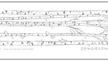 【サウナの日】3月7日はサウナへ行こう!!タナカカツキさんデザインのサウナの日記念タオル