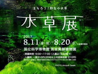 水草展2017~まもろう!野生の水草~