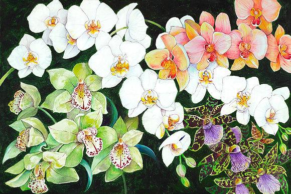 """""""Orchids"""" © Floor Mat"""