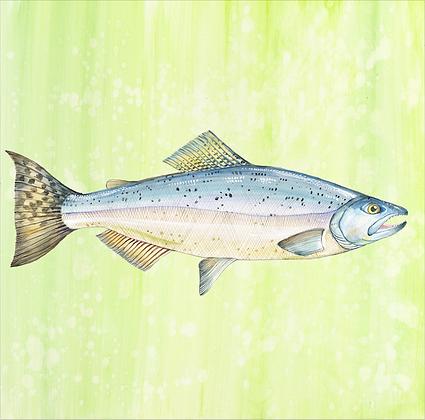 """Trout"" © Square Glass Cutting Board"