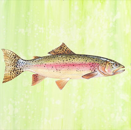 """Salmon"" © Square Glass Cutting Board"