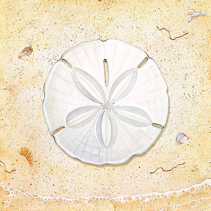 """Sand Dollar"" © Square Placemat"