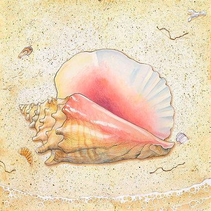 """Conch"" © Square Glass Cutting Board"