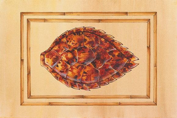 """""""Hawksbill Turtle"""" © Floor Mat"""