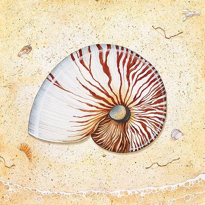 """""""Nautilus"""" © Square Glass Cutting Board"""