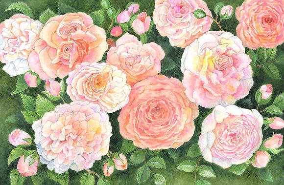 """Roses"" © Floor Mat"