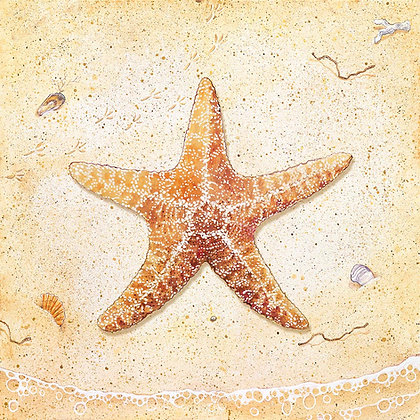 """Star Fish"" © Square Placemat"
