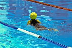 La natation....  Cliquez ici