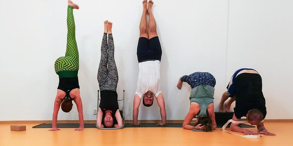 Workshop stojky na hlavě, na rukách, na předloktí