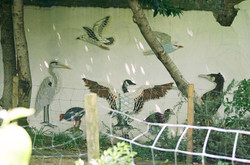 'Animal Park' Mosaic - Birds