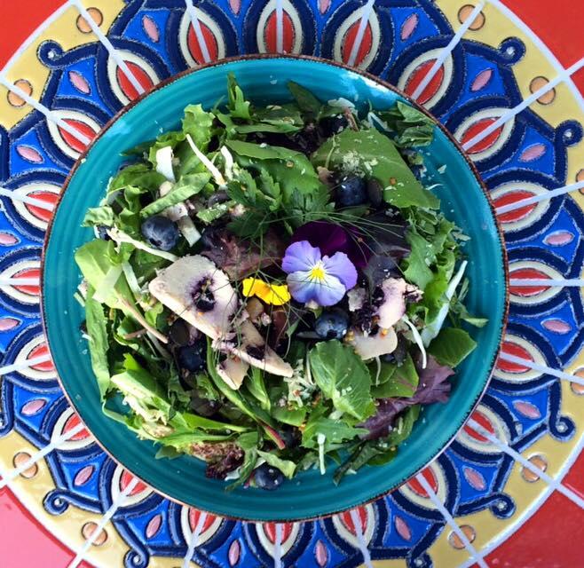 Our Seasonal Salads