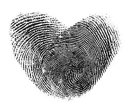 fingerprint heart isolated on white.jpg