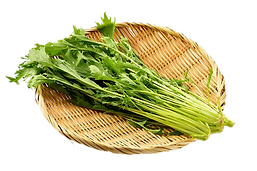 野菜:水菜.png