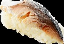 寿司:〆鯖の炙り:炙って旨味あふれます.png