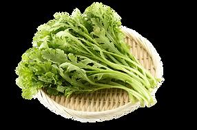 野菜:春菊.png