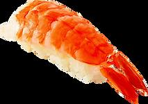寿司:えび:海老の握りです.png