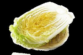 野菜:白菜.png