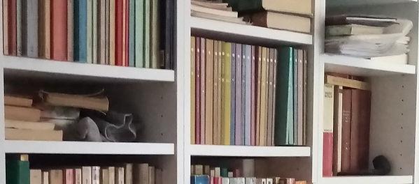 i miei libri (2).jpg