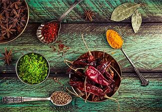 kathiawadi menu.jpg