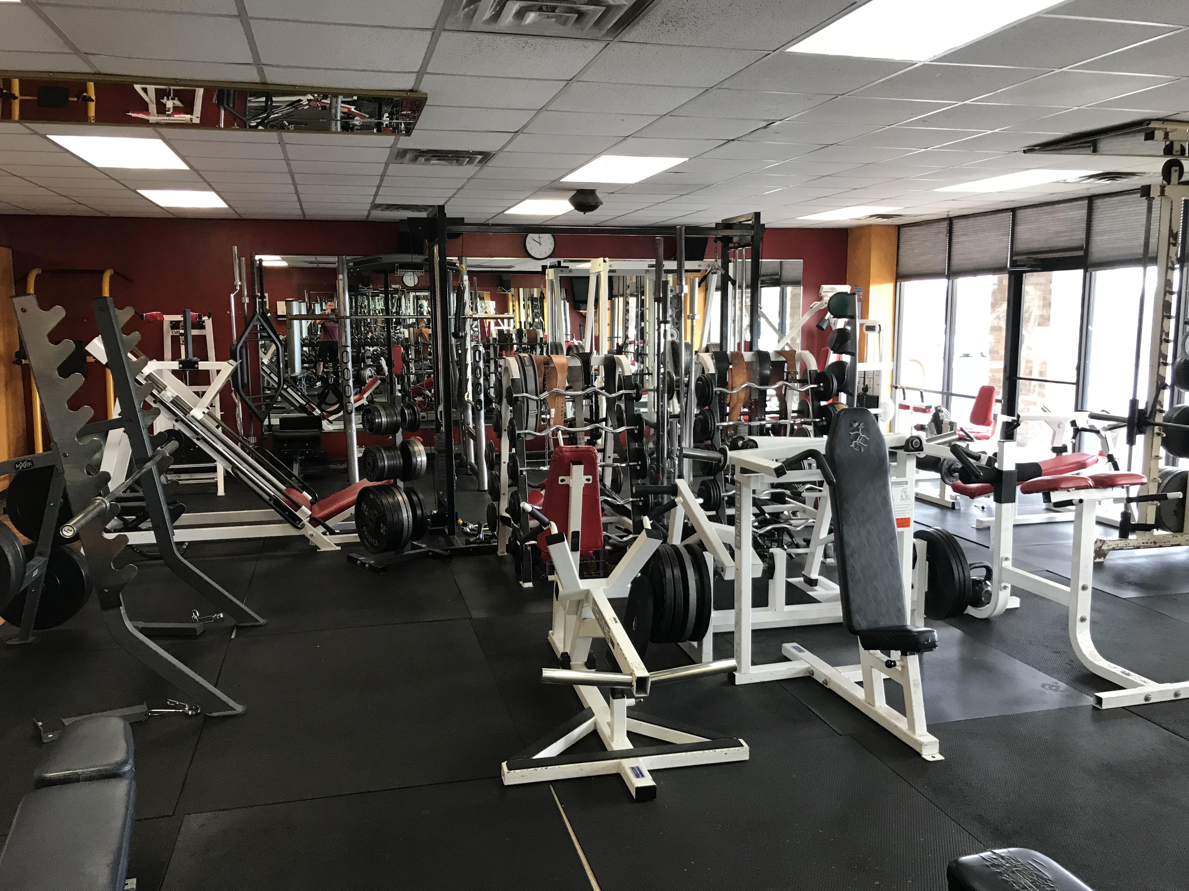 Gym and Fitness Studio