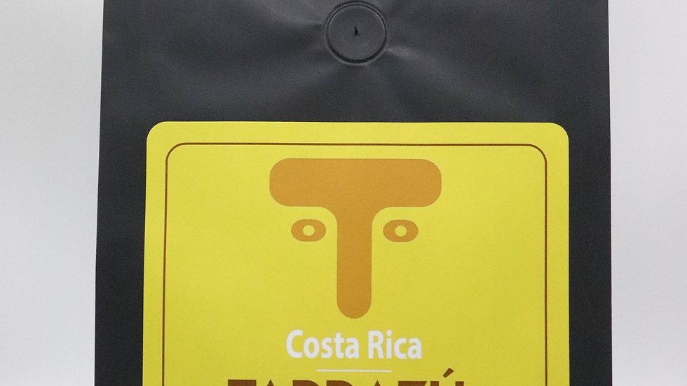 5 lb Tarrazú Honey Coffee - Wholesale