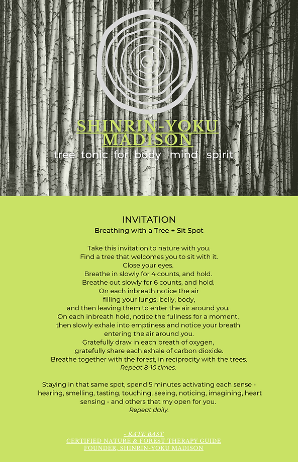 INVITATIONS Sit Spot & Breathe w a Tree Forest Bathing Experience.png