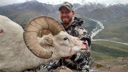 Josh Luke Dall Sheep.jpg