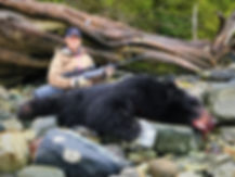 D Black Bear Edit 1.jpg