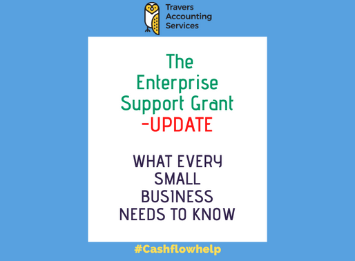 THE ENTERPRISE SUPPORT GRANT - What Every Small Business Needs to Know