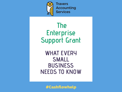 THE ENTERPRISE SUPPORT GRANT - What Every Small Business Owner Needs to Know