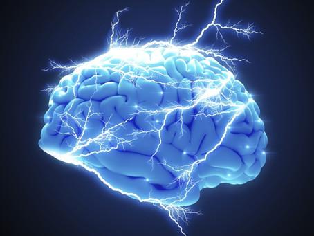 El Cerebro: una maquinaria para el éxito